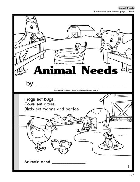 Animal Needs Booklet Science Needs of Plants and