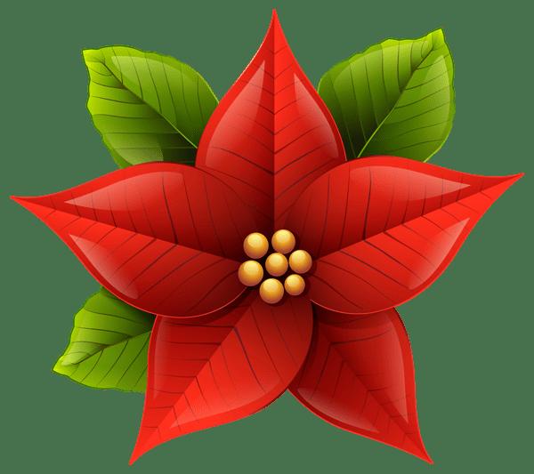 Christmas Poinsettia PNG ClipArt Image karácsony