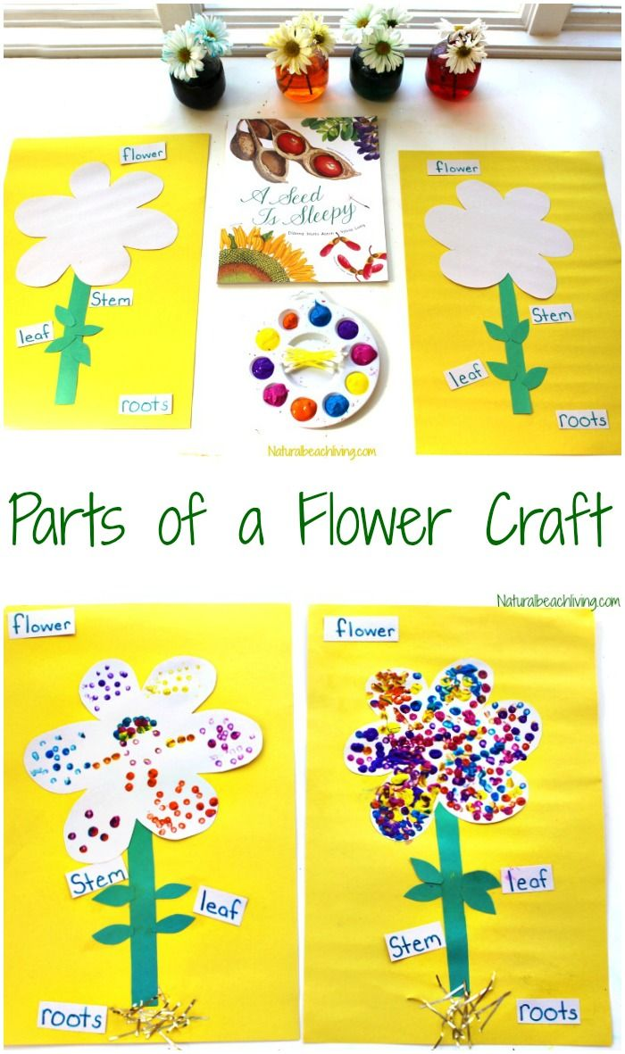 The Best Parts of a Flower Craft for Kids Flower crafts