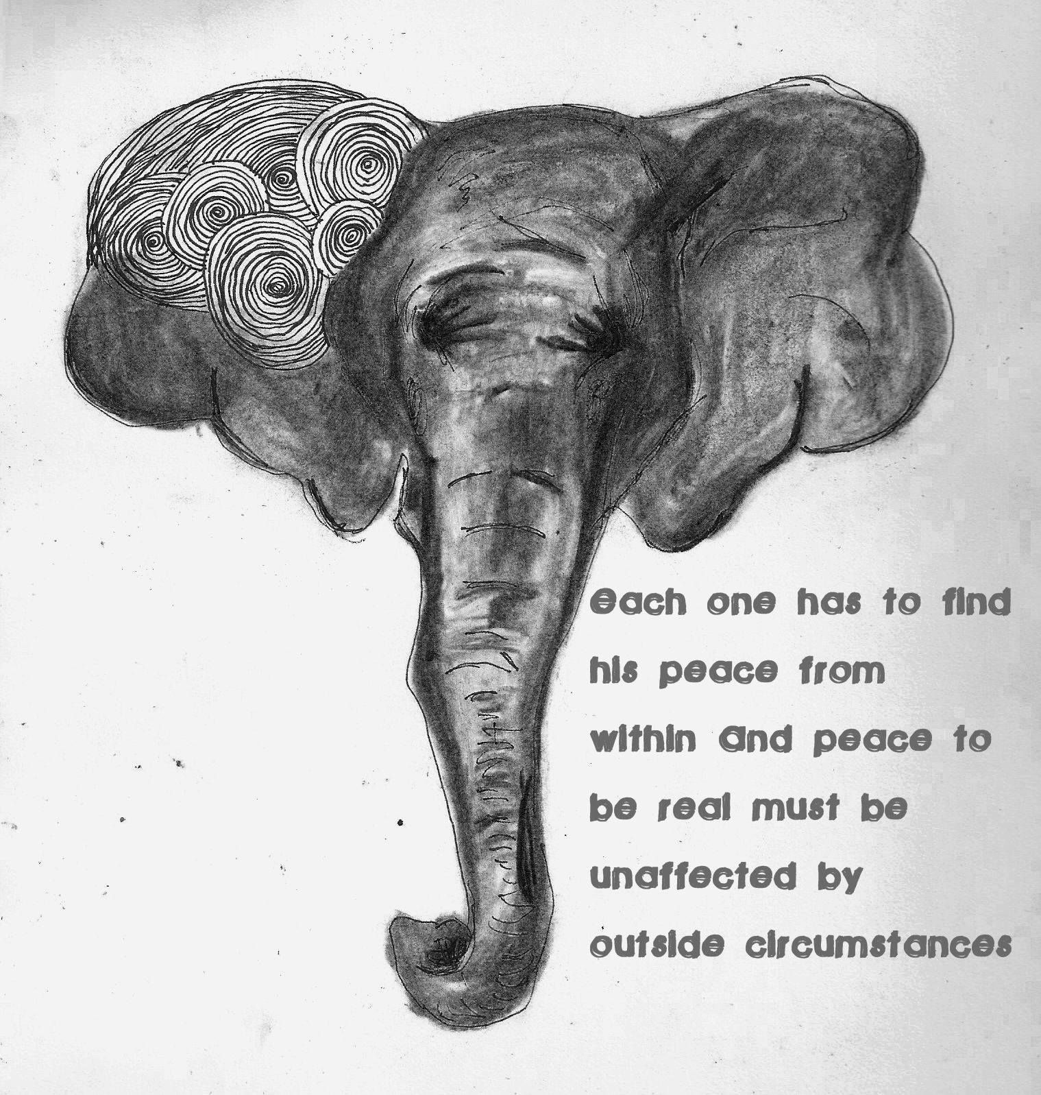 Ghandi Elephant. Quote by Ghandi. Let your light shine