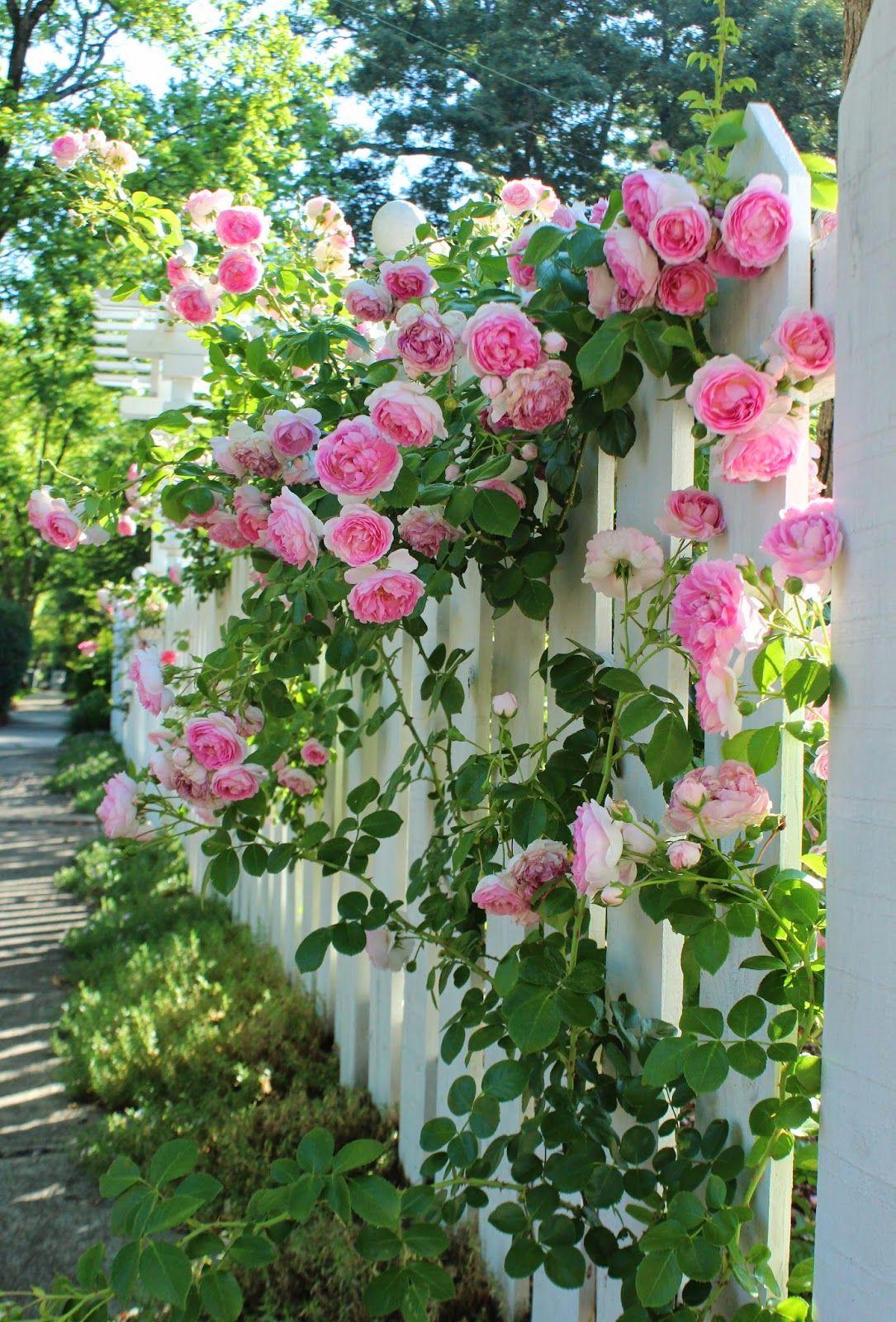 Italian Girl in Garden of Eden Flowers Roses