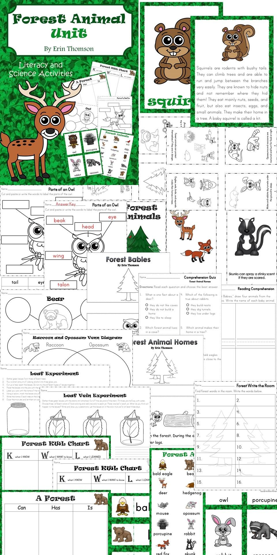 Forest Animal Literacy and Science Unit for kindergarten