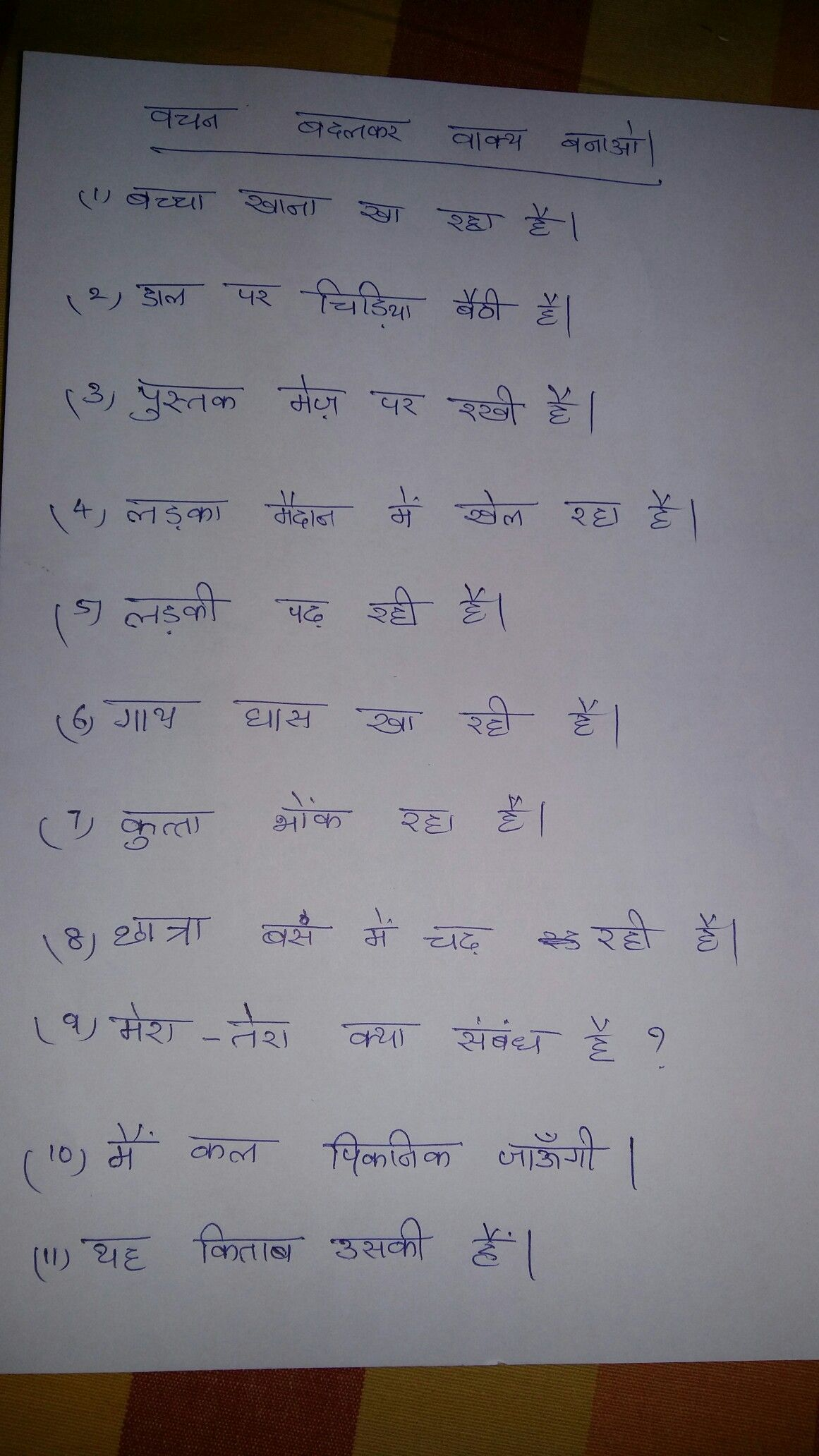 Hindi Grammar Vachan Worksheet