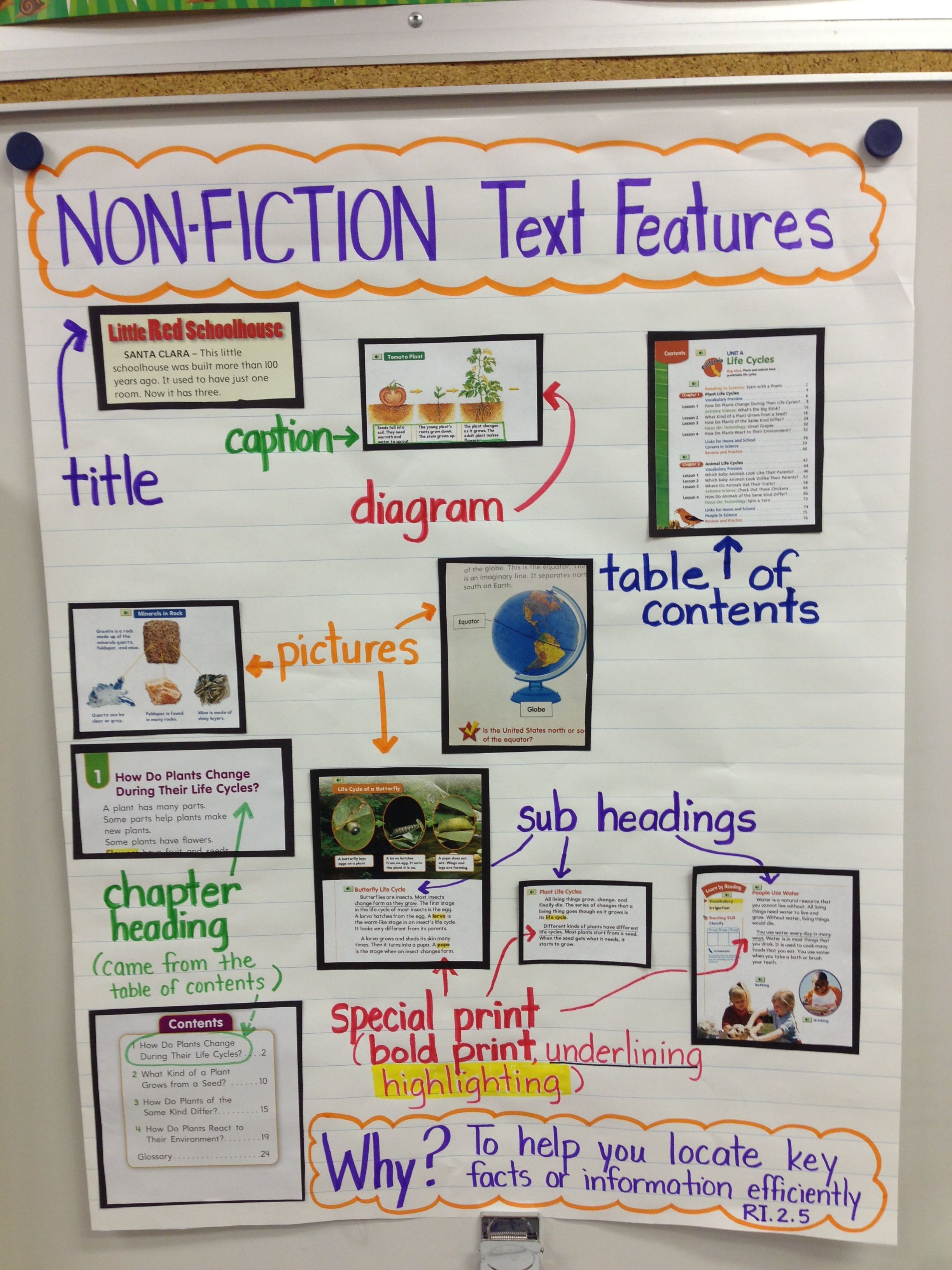 Text Features For 2nd Grade Common Core