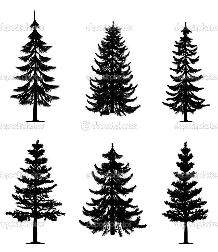trees drawings Bing Images How to Draw Realistic Trees