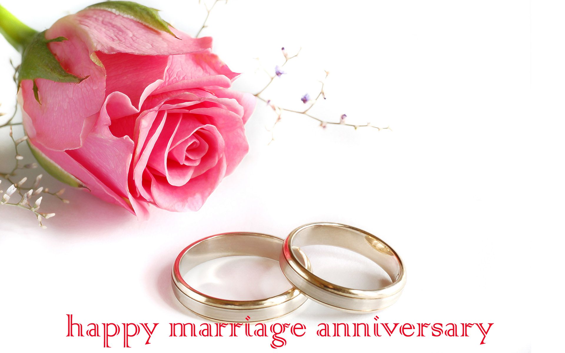 Images For > Happy Wedding Anniversary Flowers