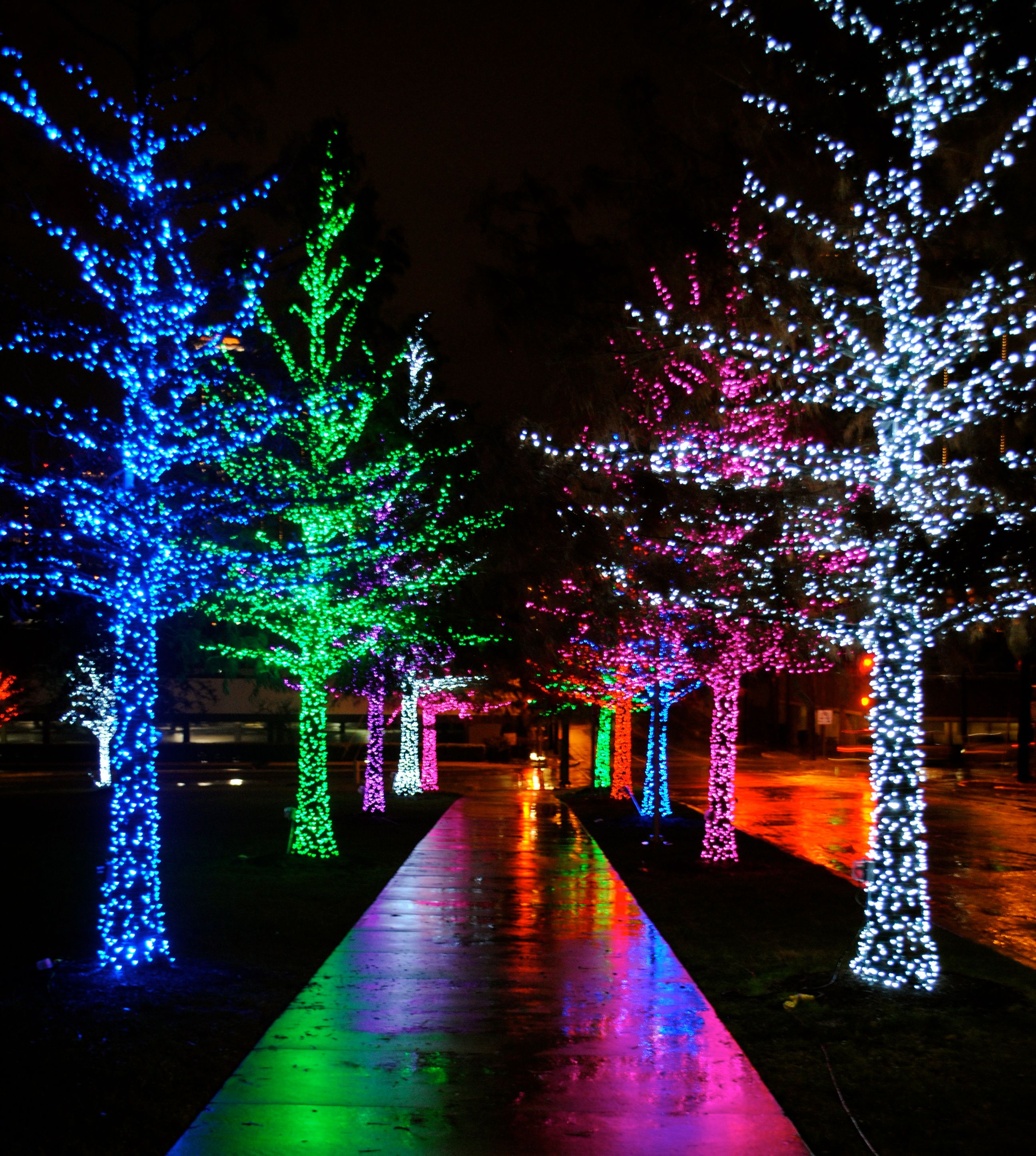 christmas lights Date Night…Martinis & Christmas Lights