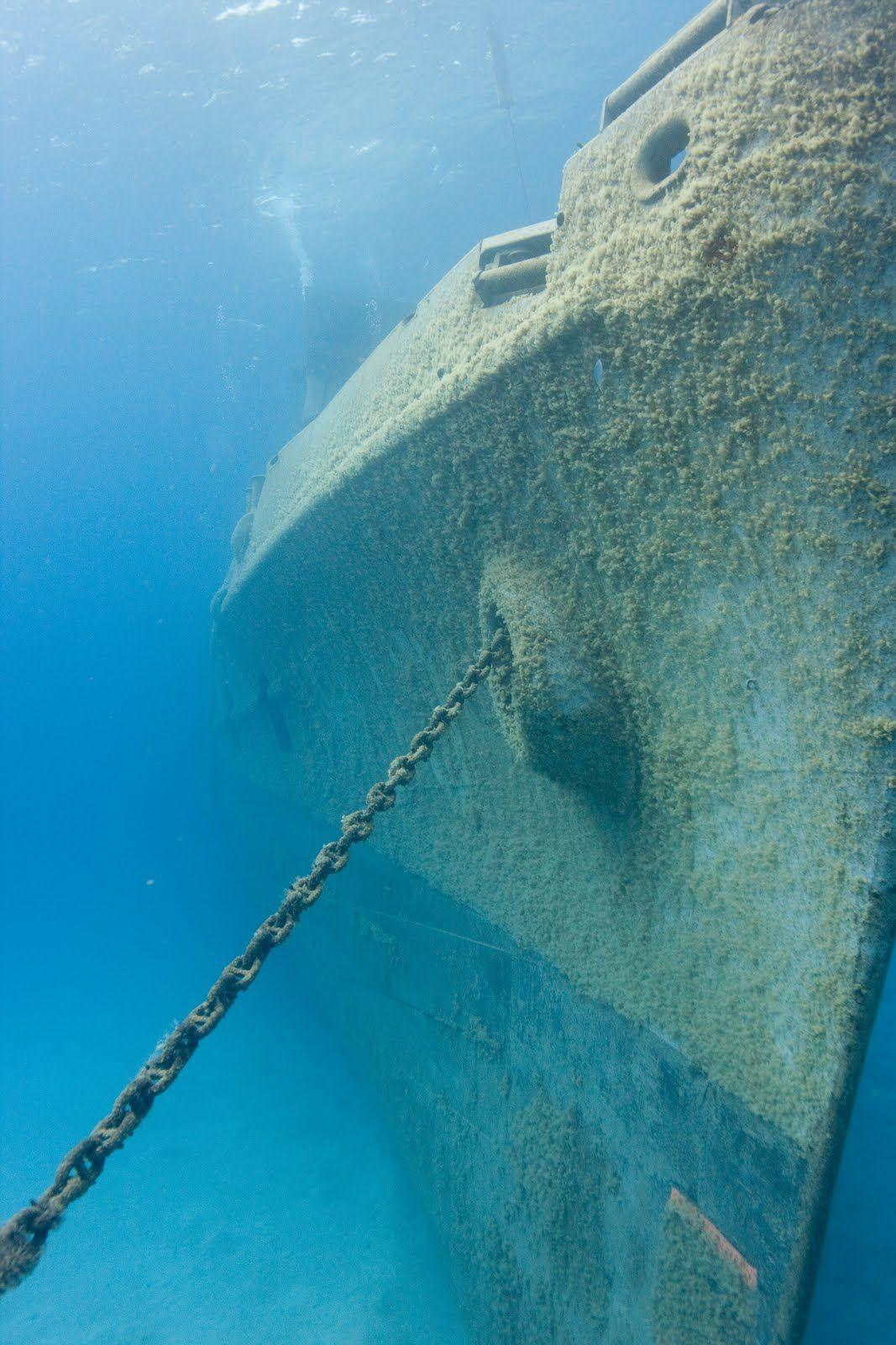 USS Arizona Underwater Bing Images War Relics