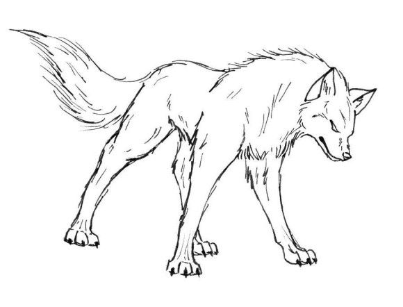 1000 images about wolf coloring pages on pinterest coloring