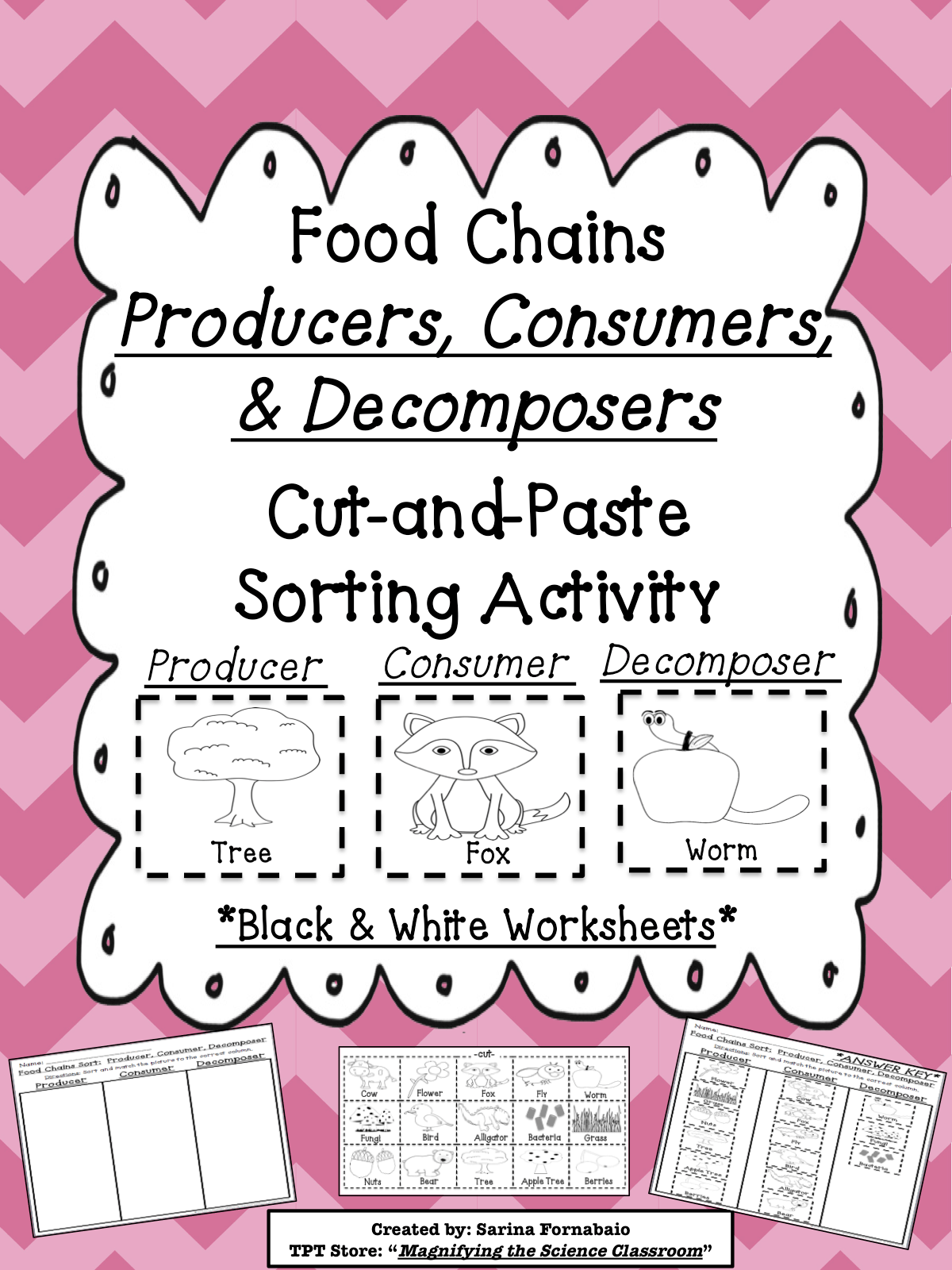 Food Chain Worksheet Cut And Paste Naga Coin Valuation