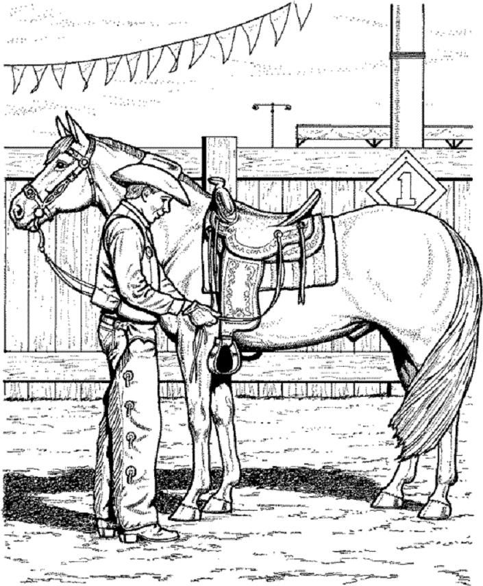 1000 images about horse colouring pages on pinterest horse
