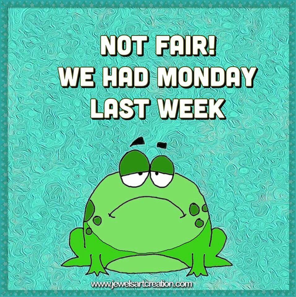 not fair frog Monday Memes Pinterest Frogs, Mondays