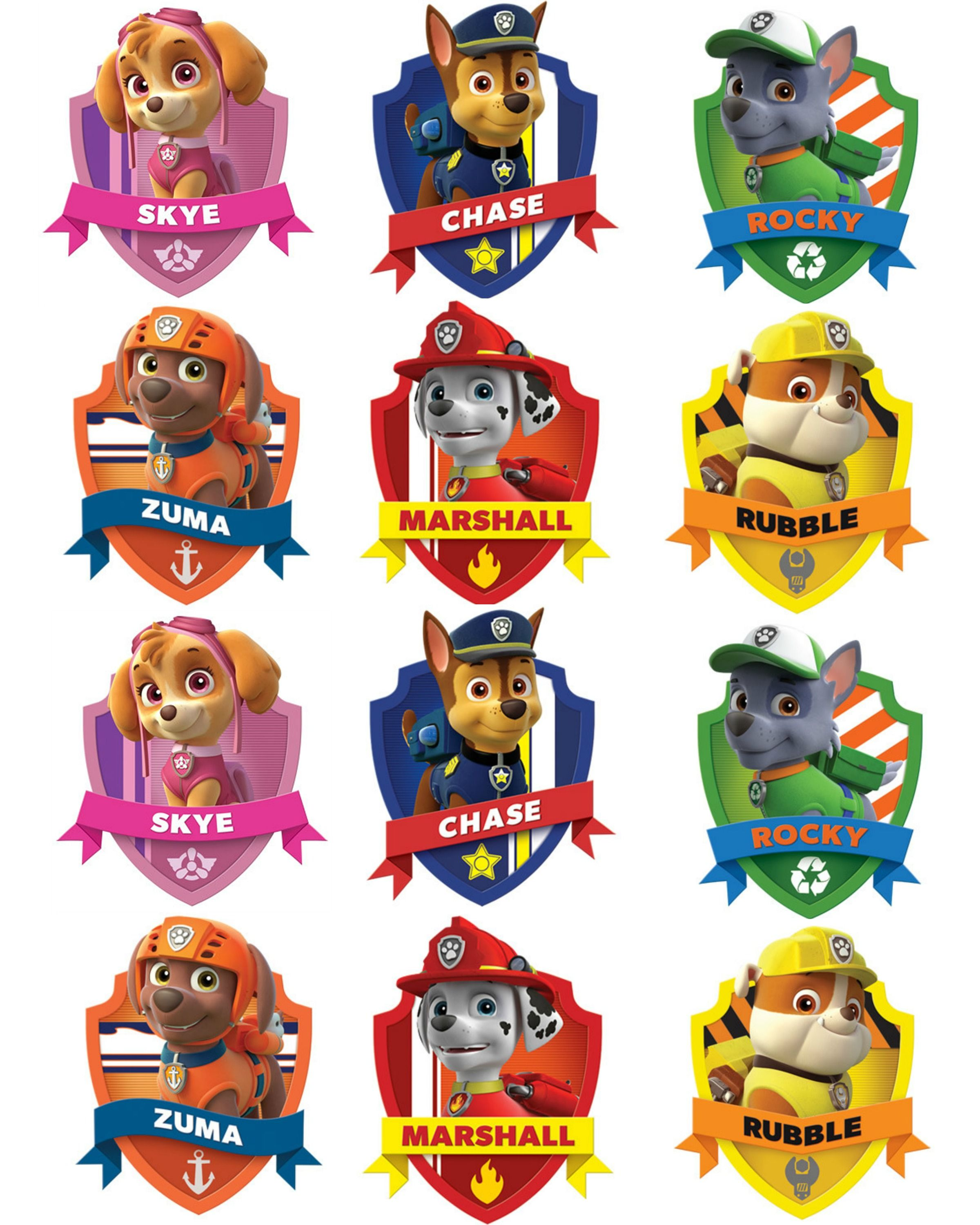 Best 25 Paw Patrol Badge Ideas