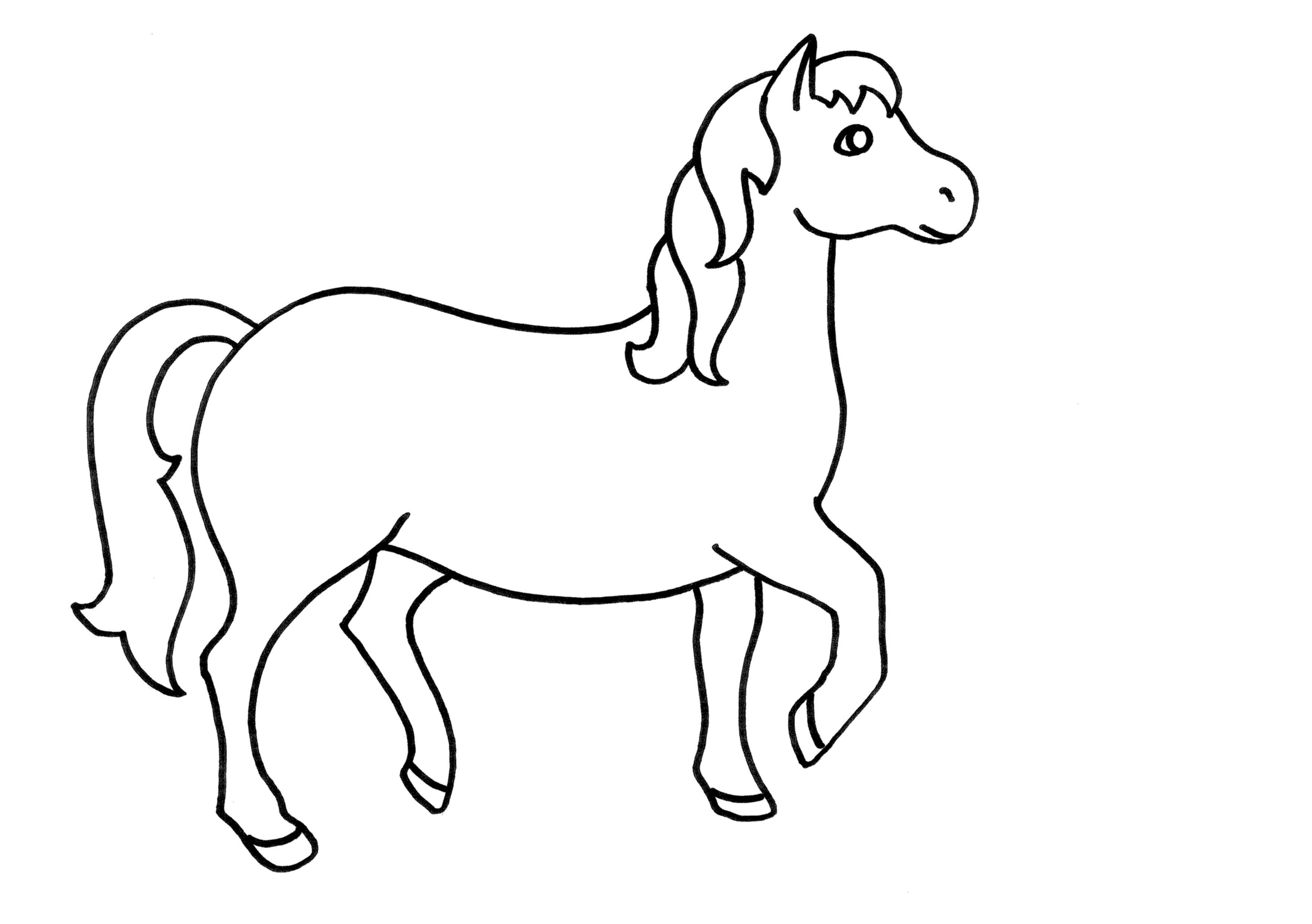 caballo, mamifero Animales Infantiles Pinterest