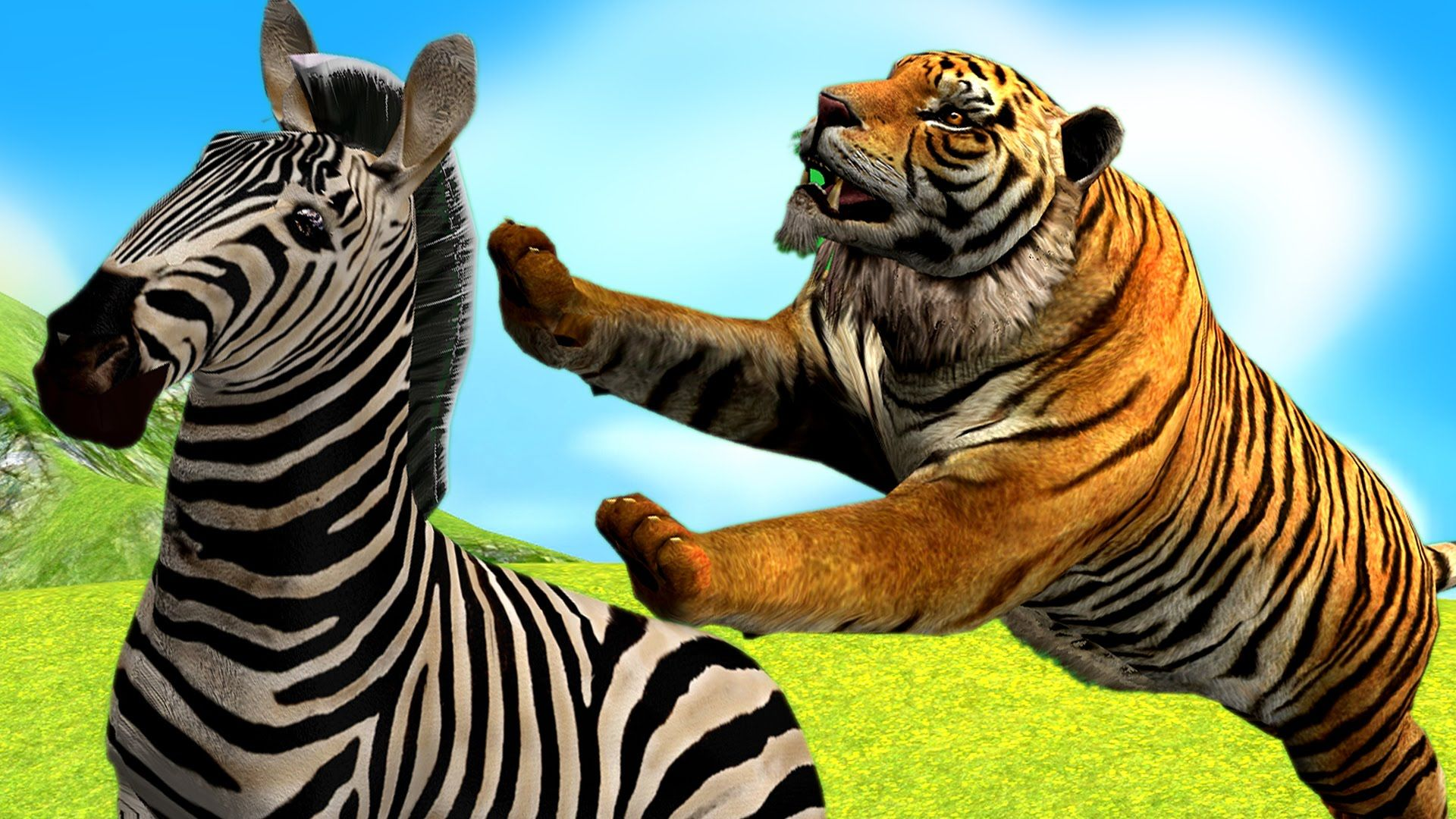 Tiger Hunting Zebra Wild Animal Fights Tiger Vs Zebra