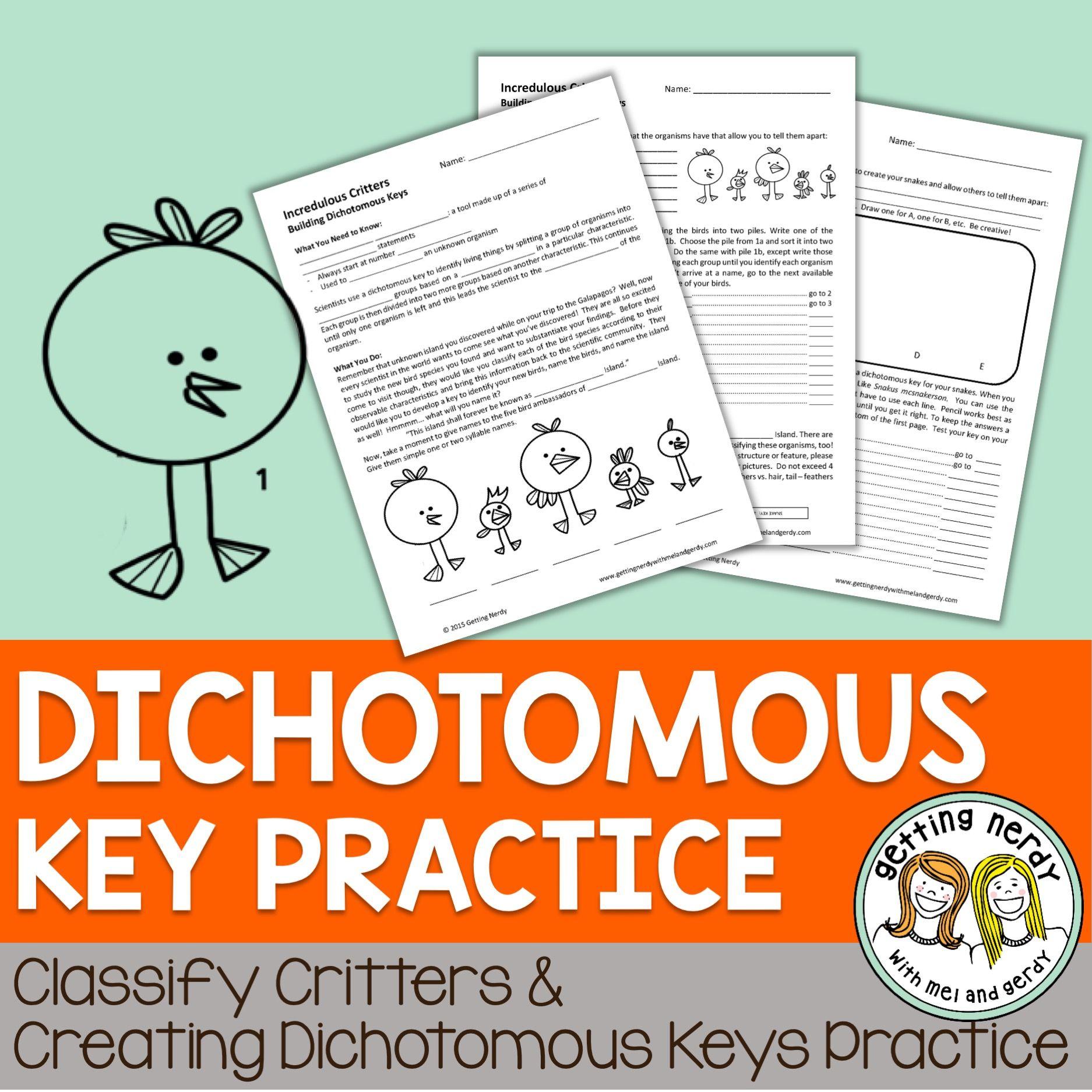 Dichotomous Key Practice
