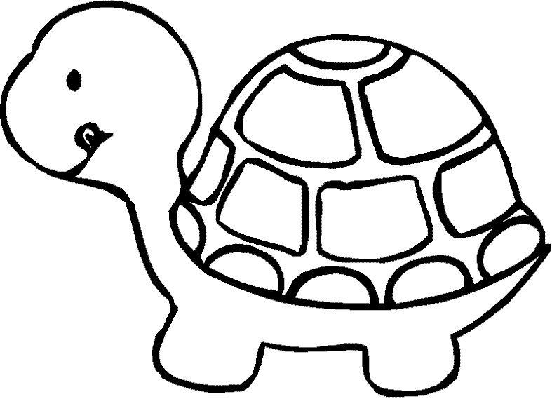 turtle coloring pages turtle coloring pages beautiful turtle