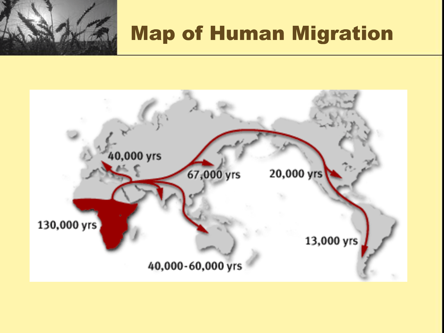 Map Of Human Migration And The Agricultural Revolution