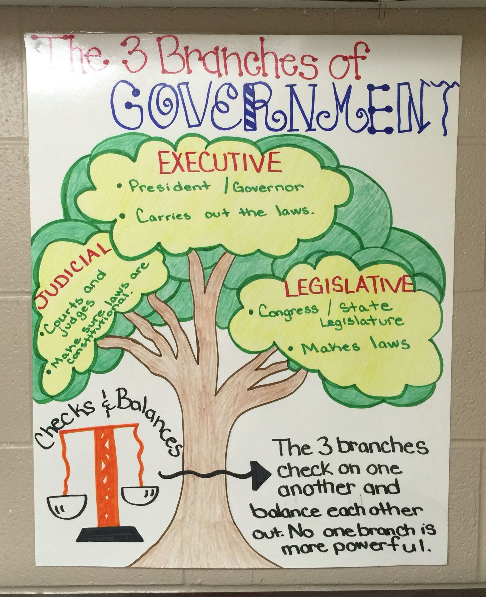 Branches Government Teacher Idea