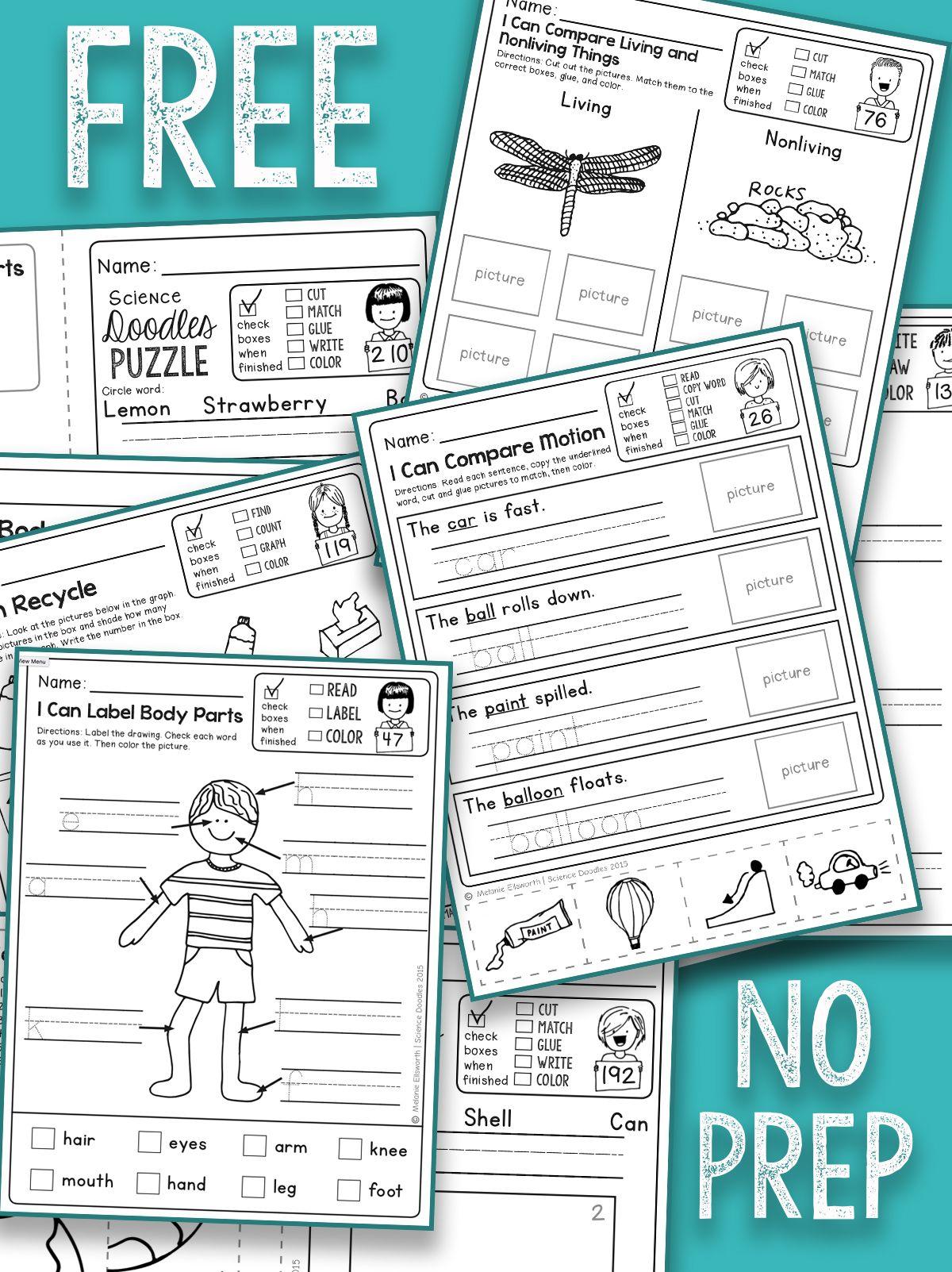 Free No Prep Kindergarten Science Printables
