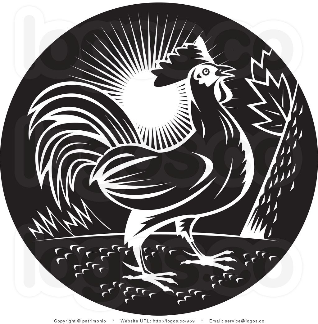 Free Rooster Pictures to Print Royalty Free Black and