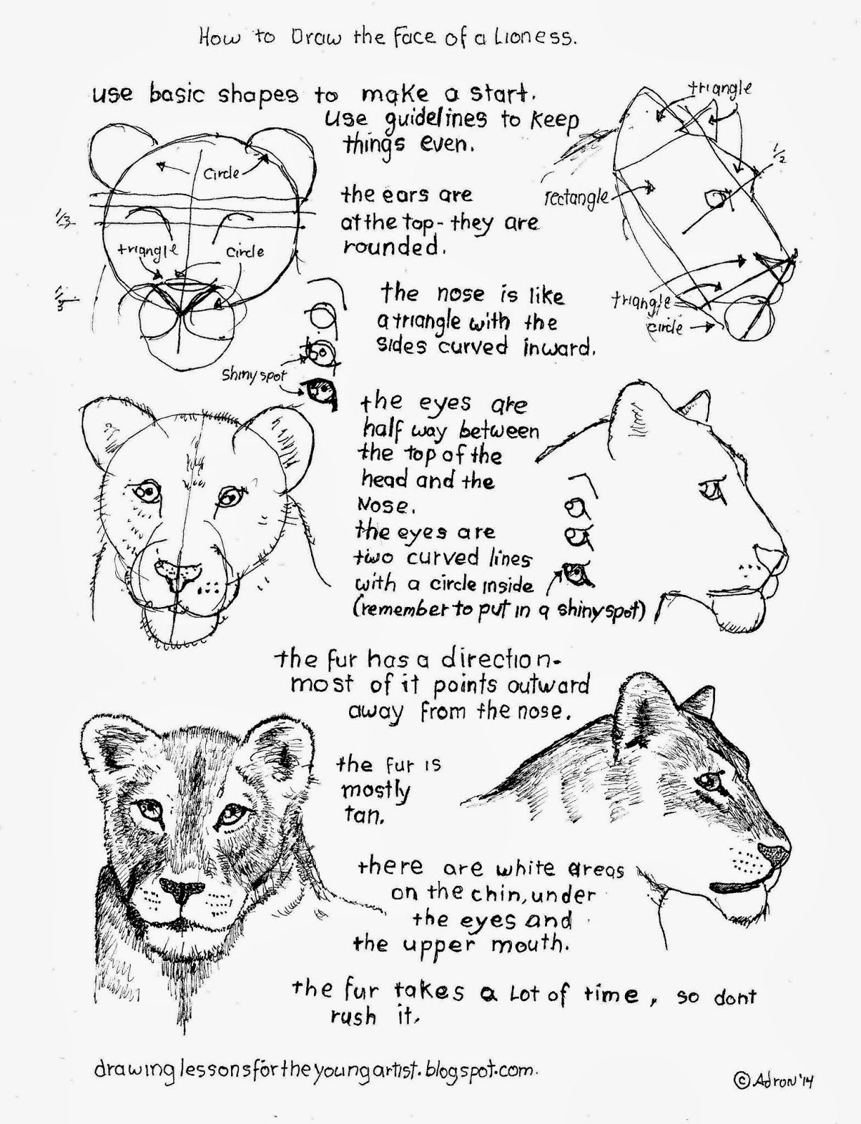These Free Drawing Worksheets With Instructions For Parents And Teachers Are Easy And Good For