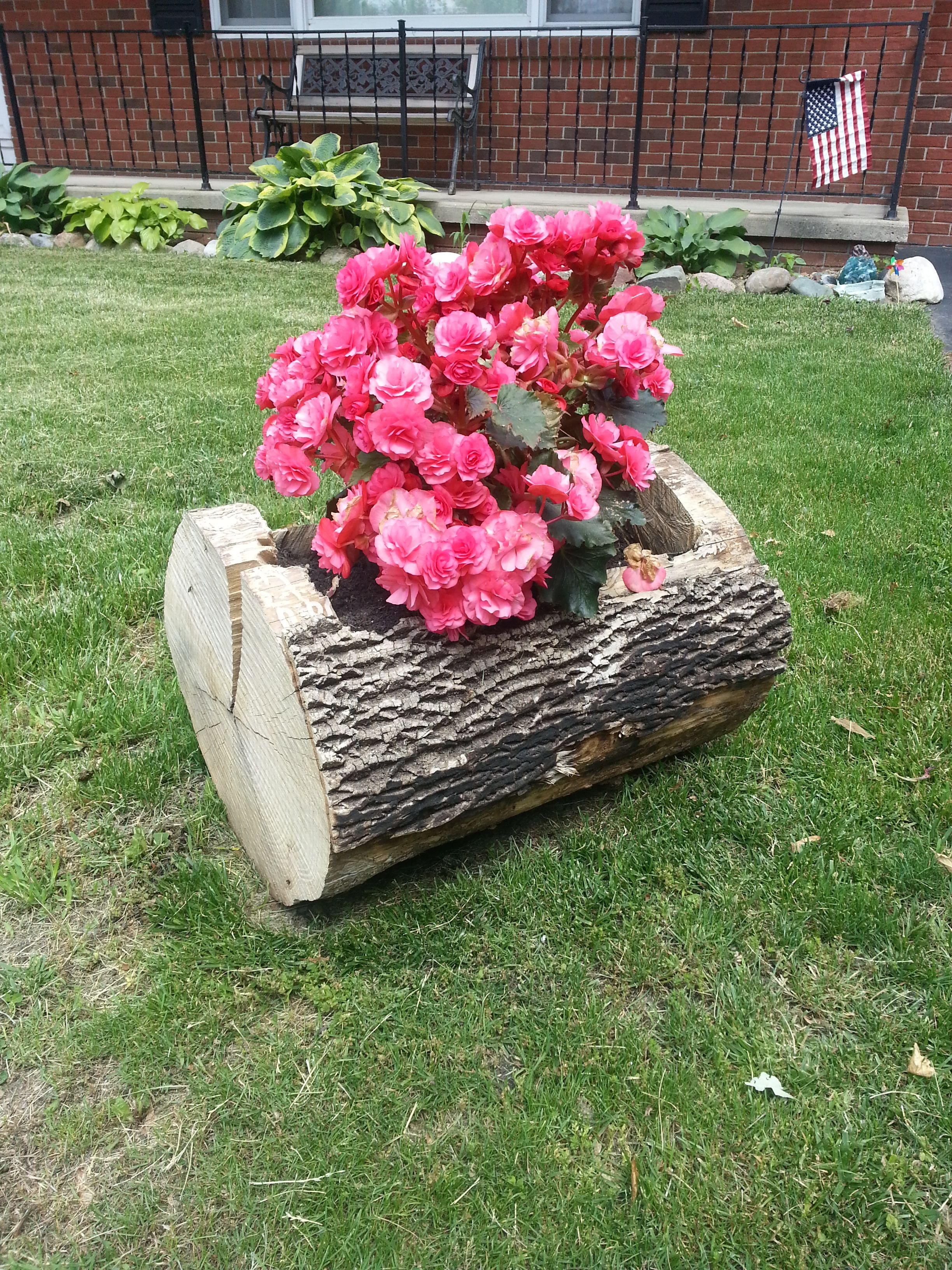 Tree trunk flower pot! Gardening Pinterest Tree