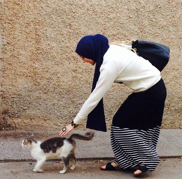 Muslim Hijabi Animal rights Cat Islamic Themes