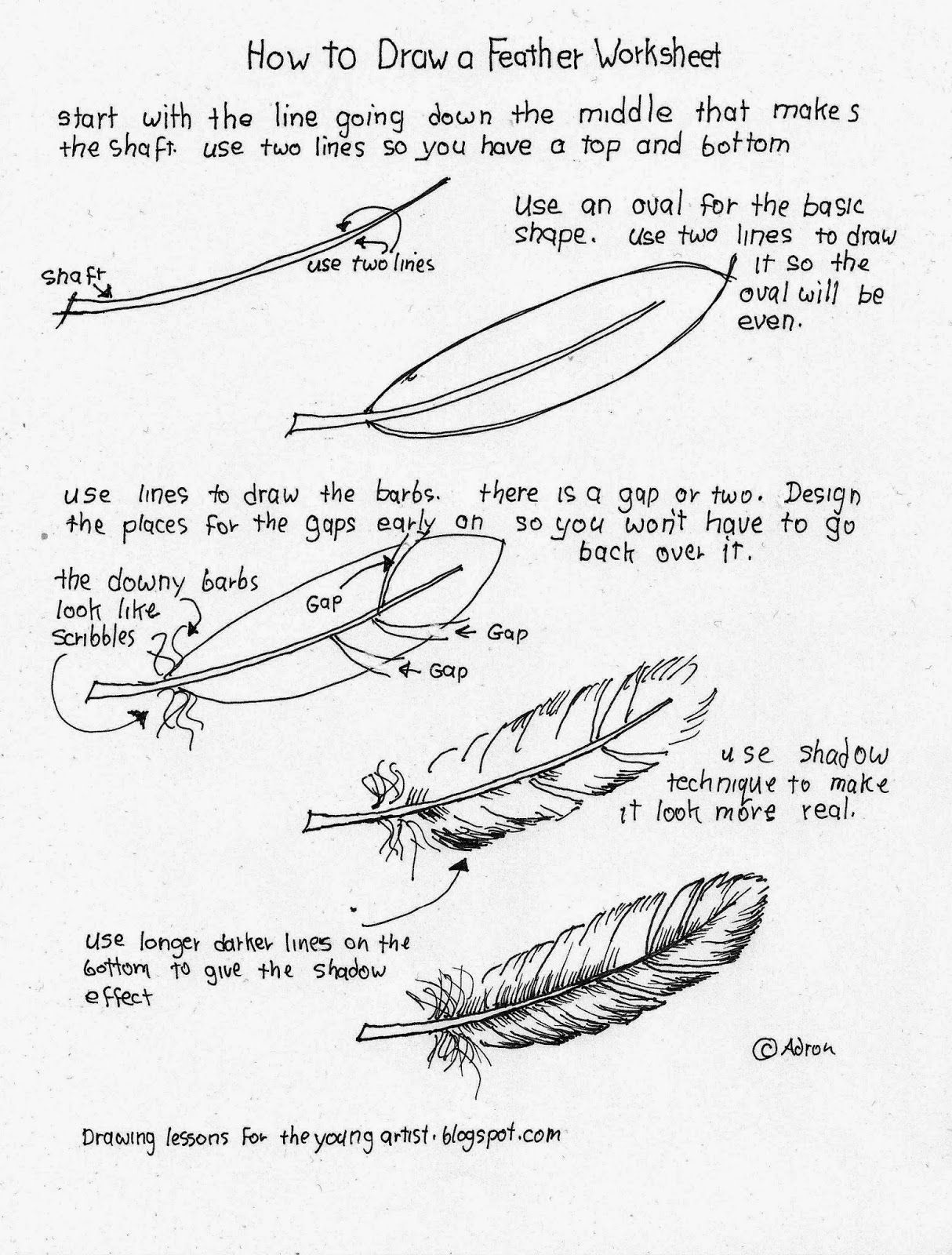 How To Draw A Feather Worksheet See More At My Blog Drawinglessonsfortheyoungartist