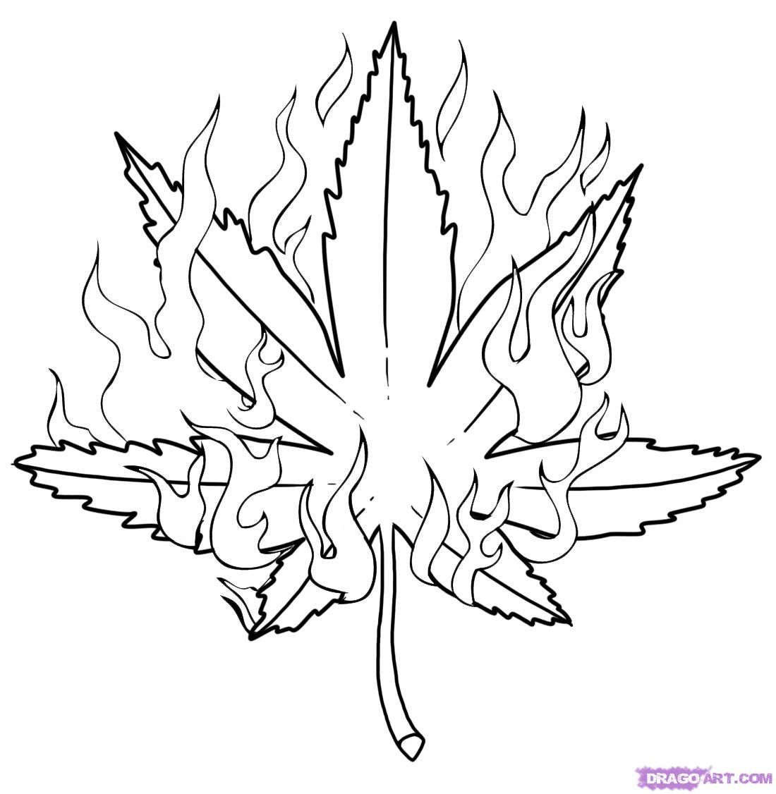 1000 images about puff puff pass on pinterest weed cannabis