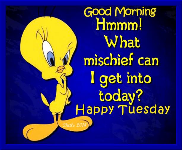 Tweety Bird Good Morning Happy Tuesday … Pinteres…