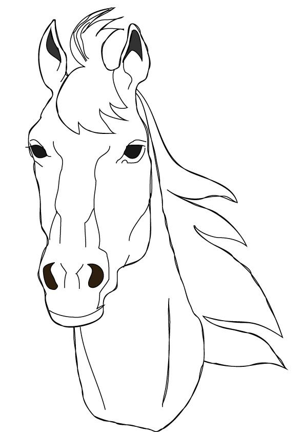 1000 images about horses on pinterest horse coloring pages