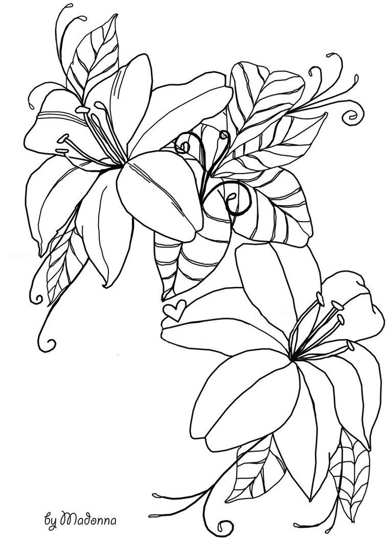 flowers line drawing stock by madonnakp89 on deviantART