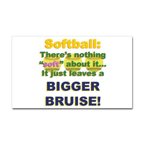 softball quote lol.   I took one for the team last week at my base :P (3rd base)