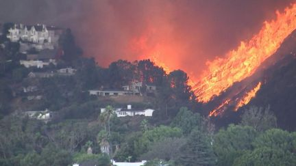 Image result for CA wildfire