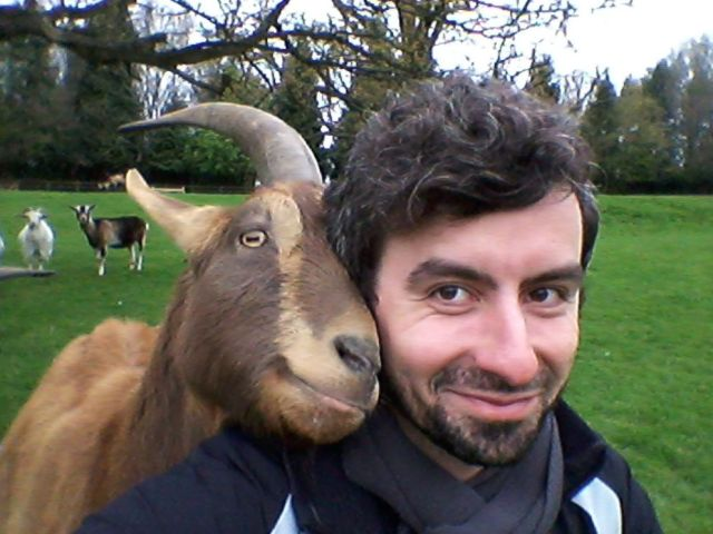 PHOTO: A study published in Royal Society Open Science shows that goats prefer positive human emotional facial expressions, and they likely to nuzzle smiling face.