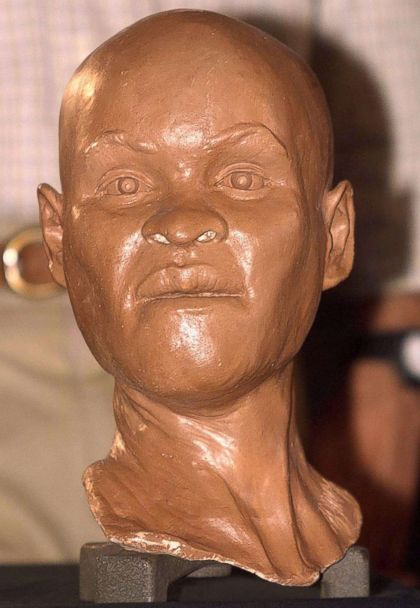 PHOTO: This file photo taken on Sept. 20, 1999 of a reconstruction of the head of 'Luzia,' 'the first Brazilian woman,' during its presentation at the National Museum of History in Rio de Janeiro. (Antonio Scorza/AFP/Getty Images)