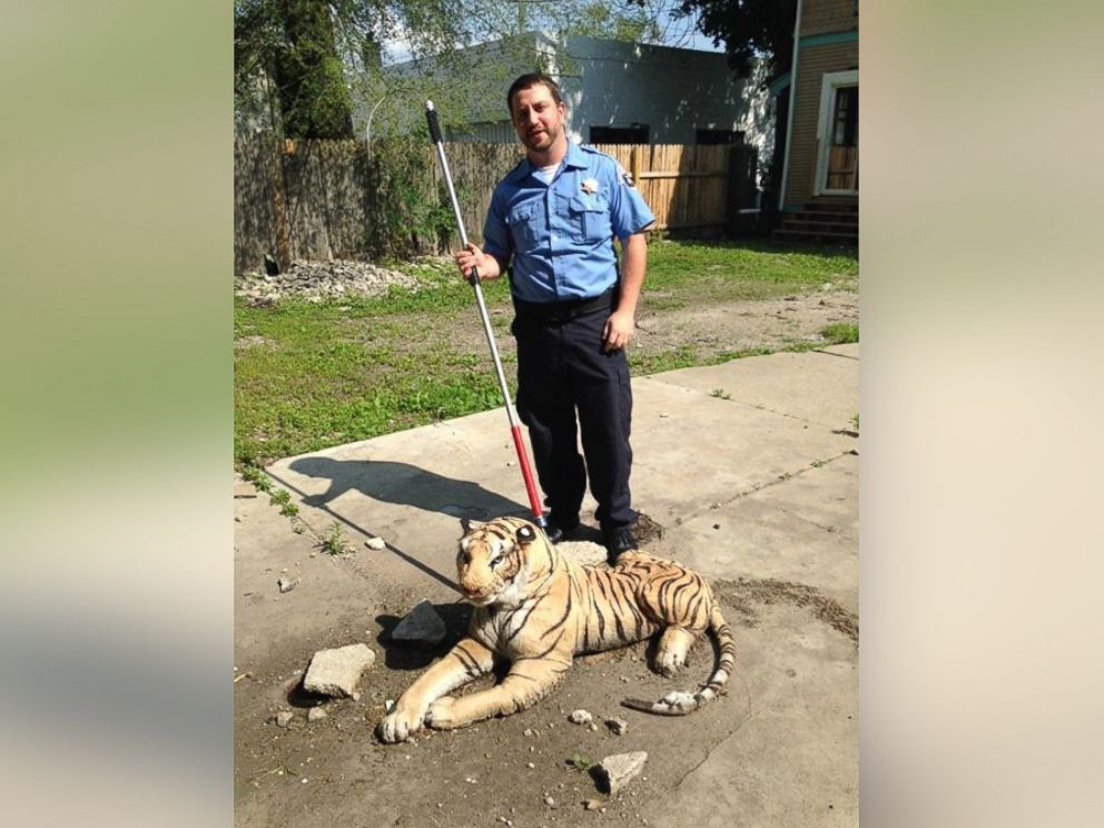 Mich  Animal Control Officer Responds to Report of Tiger in Backyard     PHOTO  The stuffed animals owner was unknown  so the officers decided to  take the