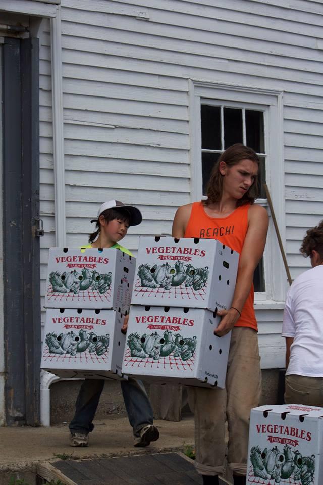 農場で大人とともに作業する鷹之介君(左)=アメリカ・マサチューセッツ州のライトロック農場