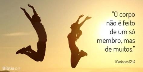 O corpo não é feito de um só membro, mas de muitos. 1 Coríntios 12:14
