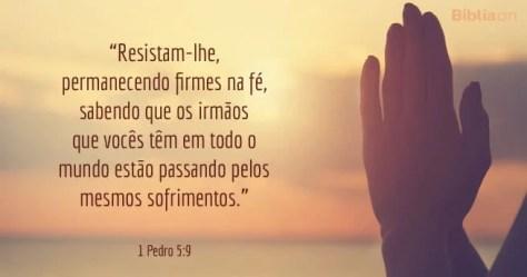 Resistam-lhe, permanecendo firmes na fé, sabendo que os irmãos que vocês têm em todo o mundo estão passando pelos mesmos sofrimentos. 1 Pedro 5:9