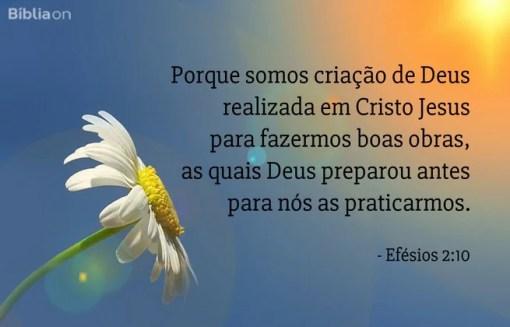 Porque somos criação de Deus realizada em Cristo Jesus para fazermos boas obras, as quais Deus preparou antes para nós as praticarmos. Efésios 2:10