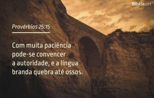 Com muita paciência pode-se convencer a autoridade, e a língua branda quebra até ossos.Provérbios 25:15