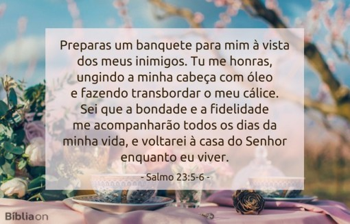 Preparas um banquete para mim à vista dos meus inimigos. Tu me honras, ungindo a minha cabeça com óleo e fazendo transbordar o meu cálice. Sei que a bondade e a fidelidade me acompanharão todos os dias da minha vida, e voltarei à casa do Senhor enquanto eu viver. Salmo 23:5-6