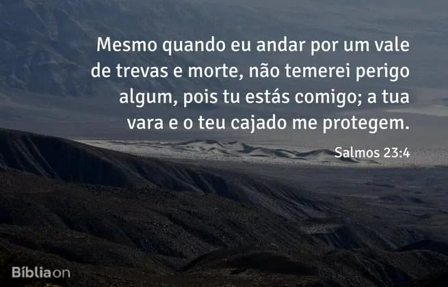 Mesmo quando eu andar por um vale de trevas e morte, não temerei perigo algum, pois tu estás comigo; a tua vara e o teu cajado me protegem. Salmos 23:4