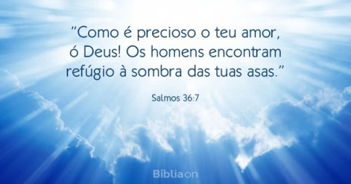 Como é precioso o teu amor, ó Deus! Os homens encontram refúgio à sombra das tuas asas. Salmos 36:7