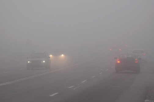 Dense fog in winter season