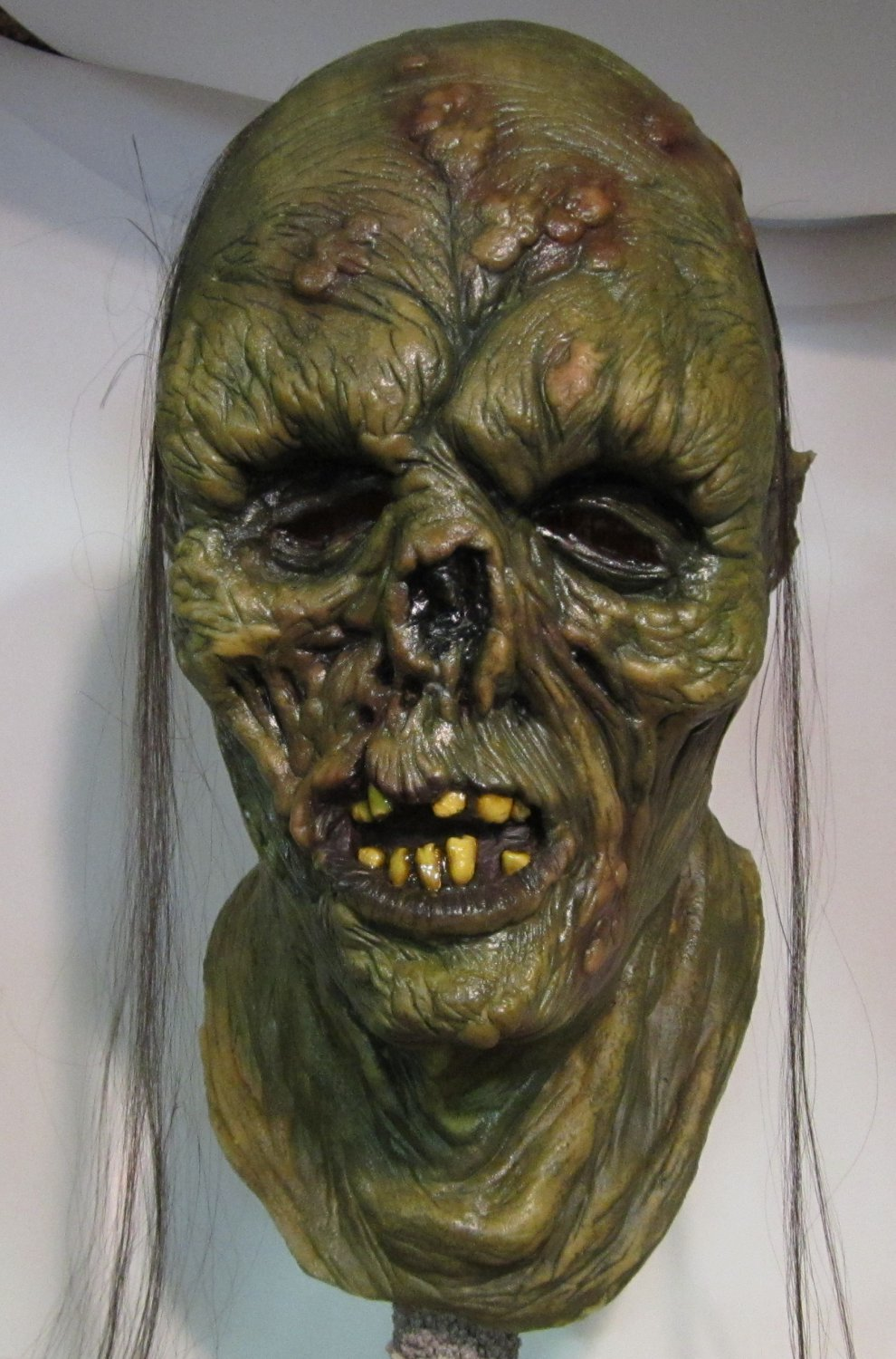Decayed Flesh Rotting Corpse Zombie Undead Walking Dead