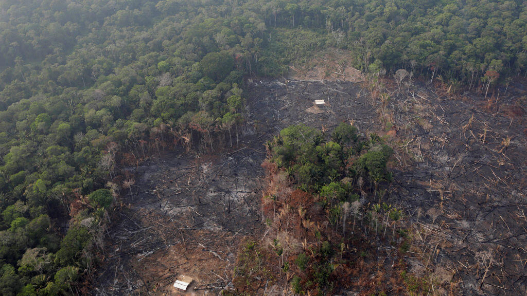 An aerial view of an Amazon forest parcel near Humaita, Amazonas state, Brazil, on August 22, 2019.
