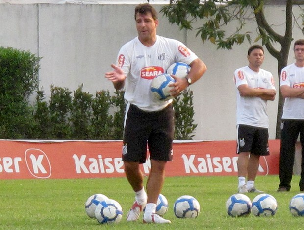 Marcelo Martelotte, técnico interino do Santos